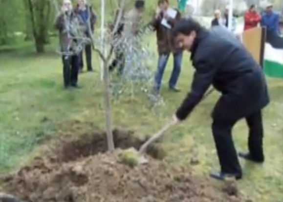 "Valls planting a ""peace tree"" in Évry dedicated to Palestine."